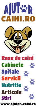 Ajutor-Caini.ro – Pentru ca prietenii se ajuta reciproc!